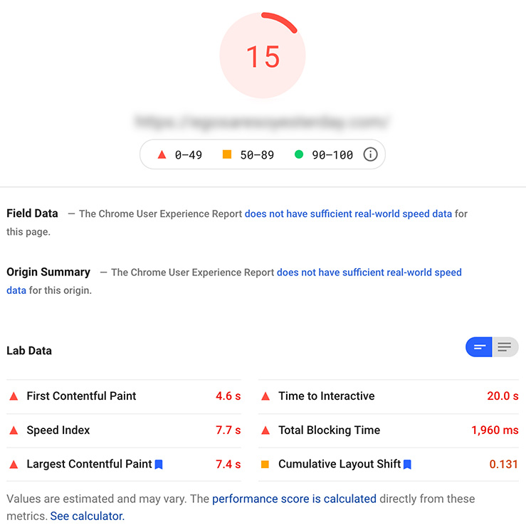 Shopify Website Google Pagespeed Insights
